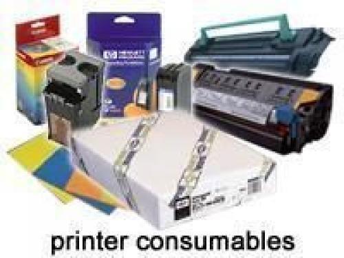 Epson Carta sintetica adesiva qualità extra, in rotoli da111,8cm (44'') x 30, 5m. cod. C13S041619
