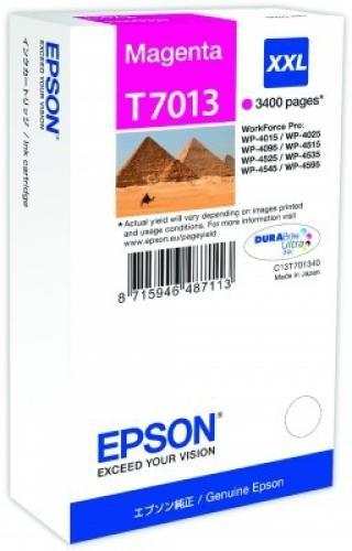 Epson Tanica Magenta cod. C13T70134010