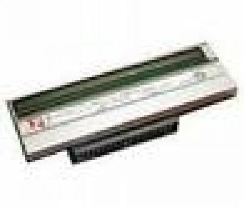 Zebra G79057M testina stampante Termica diretta cod. G79057M
