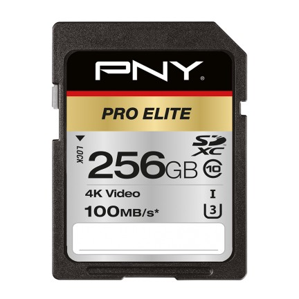 PNY PRO Elite memoria flash 256 GB SDXC Classe 10 UHS-I cod. P-SD256U3100PRO-GE